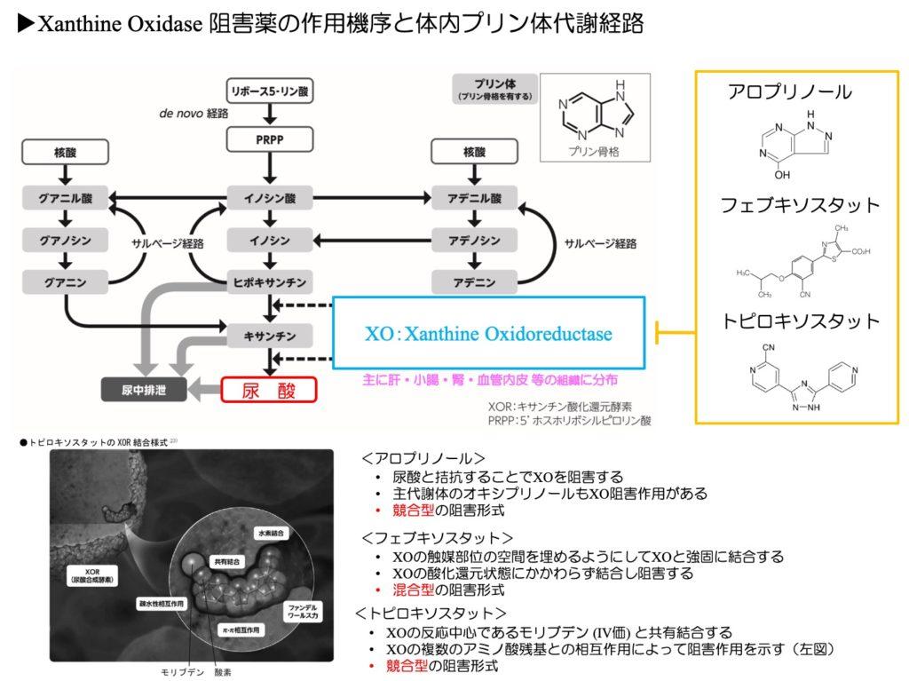 XO阻害薬の作用機序